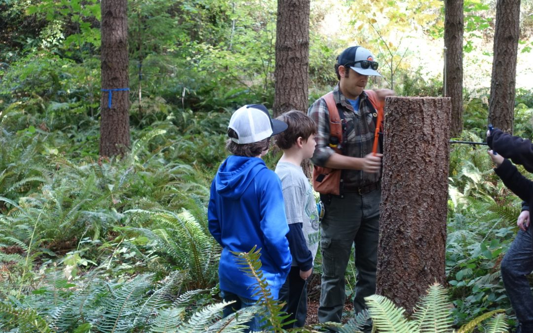 Forest Education Foundation and School Farms in Tasmania – exploring opportunities