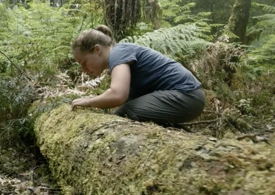 Laura Van Galen – Research Assistant – Forest Ecology